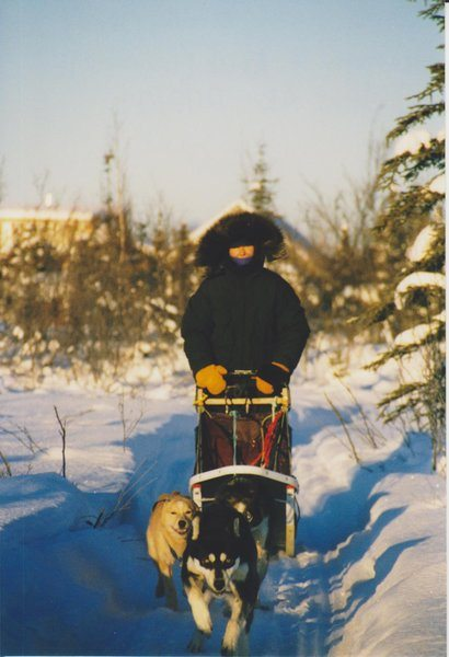 rsz_jane_mushing_in_bettles_ak