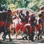 rsz_kuranda_dancer_cassawary_laura_99