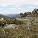 Snowy Mountains, Australia (4)